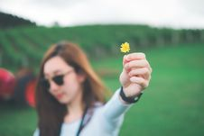 Free Woman Holding Yellow Petaled Flower Stock Images - 112089824