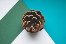 Free Brown Pinecone Close-up Royalty Free Stock Images - 112089859