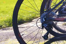 Free Road Bicycle, Bicycle, Bicycle Wheel, Bicycle Frame Royalty Free Stock Photography - 112120537
