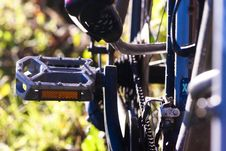 Free Road Bicycle, Bicycle, Vehicle, Bicycle Accessory Royalty Free Stock Image - 112121406