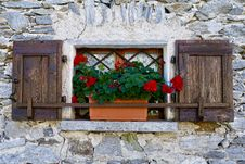 Free Wall, Window, Flower, Facade Royalty Free Stock Photo - 112121675
