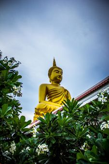 Free Gautama Buddha Statue Near Green Leaves Royalty Free Stock Images - 112184479