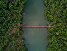 Free Aerial Photography Of Brown Wooden Foot Bridge Connecting Two Forests Stock Photo - 112184590