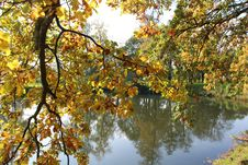 Free Reflection, Nature, Water, Autumn Stock Photos - 112200773