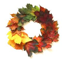 Free Leaf, Maple Leaf, Tree, Autumn Royalty Free Stock Photo - 112201385