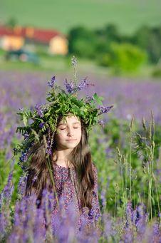 Free Flower, Plant, Purple, Spring Stock Photos - 112201453