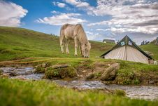 Free White And Black Tent On Green Grass Field Royalty Free Stock Photography - 112301557