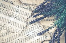 Free Purple Lavender Over Note Pages Stock Photos - 112455013