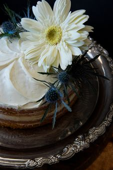 Free White Flowers On Round Cake With White Cream Stock Images - 112455014
