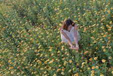 Free Flower, Field, Plant, Grass Stock Photography - 112495342
