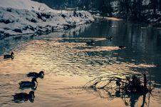 Free Water, Reflection, Body Of Water, Lake Royalty Free Stock Image - 112567656