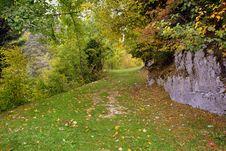 Free Leaf, Nature, Autumn, Woodland Stock Photo - 112570800