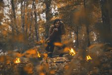 Free Forest, Fire, Woodland, Bonfire Royalty Free Stock Photography - 112678267