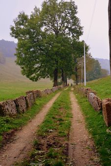 Free Tree, Path, Sky, Road Royalty Free Stock Images - 112679029
