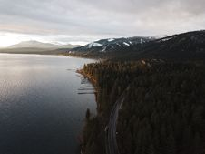 Free Aerial Photography Of Dense Forest Near Body Of Water Royalty Free Stock Photo - 112809415