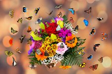 Free Flower, Yellow, Flora, Floristry Royalty Free Stock Image - 112840576