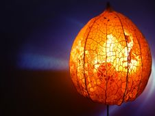 Free Lighting, Lighting Accessory, Lampshade, Cucurbita Royalty Free Stock Photography - 112840687