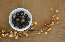 Free Still Life Photography, Superfood, Still Life, Fruit Royalty Free Stock Photography - 112840777