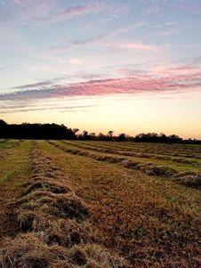 Free Sky, Field, Grassland, Prairie Stock Photo - 112841110
