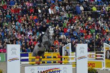 Free Crowd, Sport Venue, Horse Like Mammal, Competition Event Royalty Free Stock Photos - 112841408