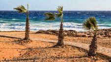 Free Sea, Sky, Shore, Beach Royalty Free Stock Photo - 112841495
