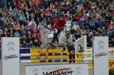 Free Show Jumping, Horse, Equestrian, Equestrianism Stock Image - 112841531