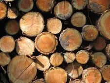 Free Wood, Lumber Royalty Free Stock Photography - 112842867