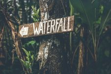 Free Brown Wooden Waterfall Direction Sign Placed On Brown Tree Bark Royalty Free Stock Image - 112878176