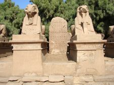 Free Galery Of Sphinx Royalty Free Stock Photography - 1131107