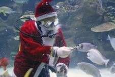 Free Santa Clause Feeding Fishes Stock Photo - 1131190