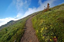 Trail In The Mountains Royalty Free Stock Photo
