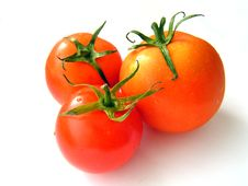 Free Tomatoes. Royalty Free Stock Photos - 1135768