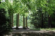 Free Lost Temple In A Forest Stock Photos - 1136623