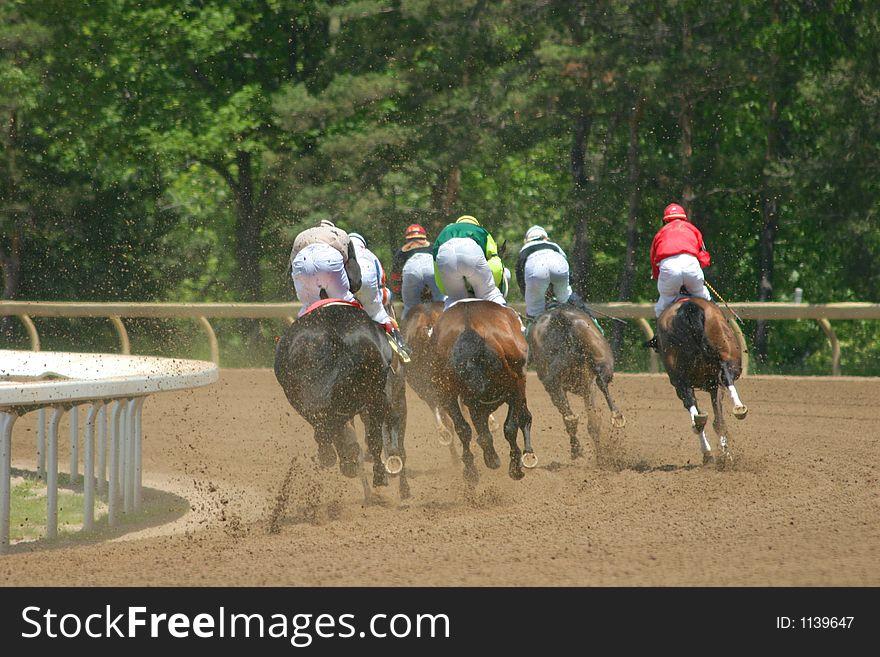 Horses Round the Corner