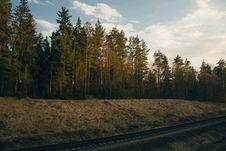 Free Photo Of Trees Near Railway Stock Photography - 113036162