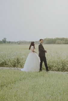 Free Bride And Groom On Rice Field Stock Photos - 113036373