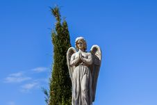 Free Statue, Sky, Monument, Tree Stock Photography - 113057802