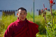 Free Red, Plant, Lama, Monk Stock Photo - 113058500