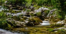 Free Stream, Water, Nature, Vegetation Stock Photos - 113066053