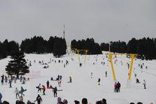 Free Snow, Winter, Tree, Geological Phenomenon Royalty Free Stock Image - 113066866