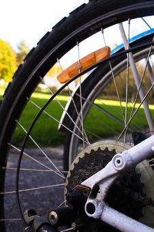 Free Road Bicycle, Bicycle Wheel, Bicycle, Spoke Royalty Free Stock Photos - 113069168