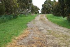 Free Road, Path, Dirt Road, Nature Reserve Royalty Free Stock Photography - 113150057