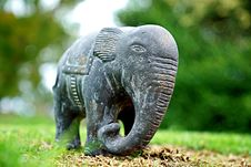 Free Elephants And Mammoths, Elephant, Terrestrial Animal, Indian Elephant Stock Photos - 113152533