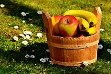 Free Fruit, Apple, Local Food, Produce Royalty Free Stock Images - 113154219