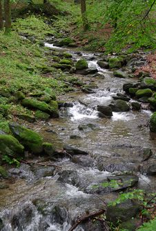 Free Stream, Water, Nature, Creek Royalty Free Stock Photography - 113166637