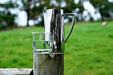 Free Grass, Water, Grass Family, Drinkware Royalty Free Stock Photography - 113169307