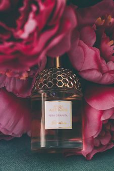 Free Perfume Bottle Surrounded By Flowers Royalty Free Stock Photography - 113232207