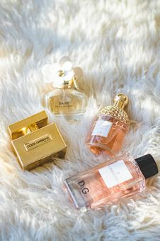 Free Assorted Dolce & Gabbana Fragrance Bottles Stock Photos - 113232343