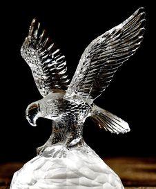 Free Bird Of Prey, Eagle, Fauna, Bird Royalty Free Stock Image - 113240566