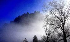 Free Sky, Tree, Atmosphere, Fog Royalty Free Stock Photos - 113241138